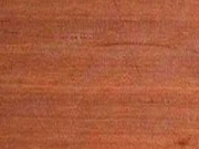 turpentine timber